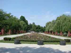 vegetatie parc 1