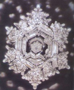 Masaru_Emoto_hado_water_foto_No_11-249x300