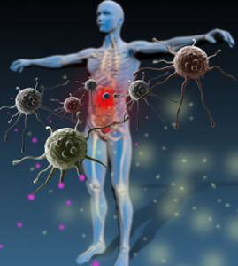 sistem-imunitar