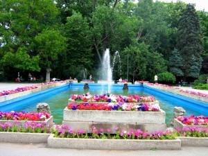 Flowers_in_Herastrau_Park - zona fantani